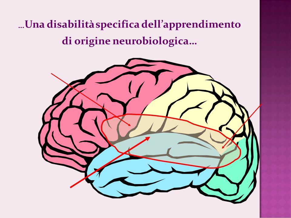 di origine neurobiologica…