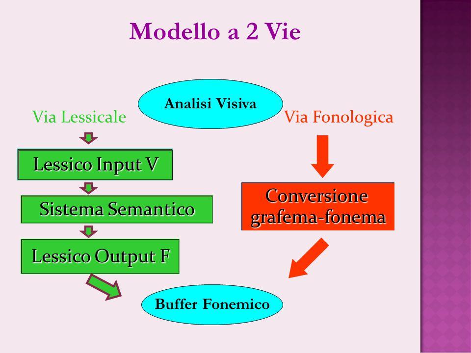 Modello a 2 Vie Lessico Input V Conversione grafema-fonema