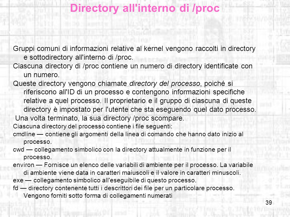 Directory all interno di /proc