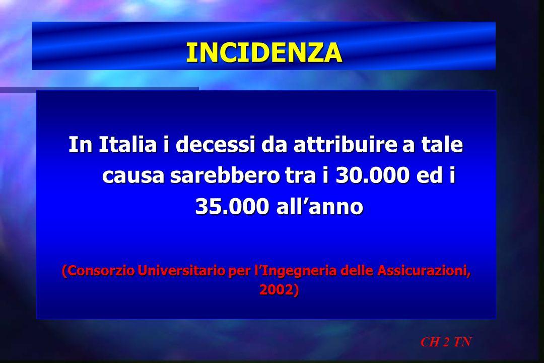(Consorzio Universitario per l'Ingegneria delle Assicurazioni, 2002)