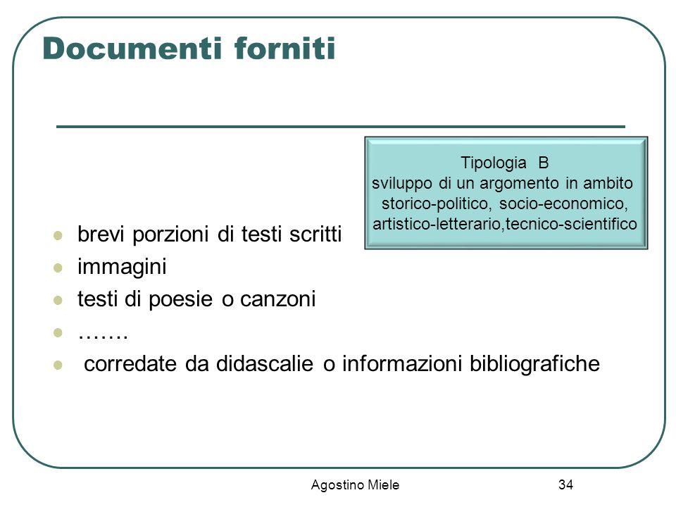 Documenti forniti brevi porzioni di testi scritti immagini
