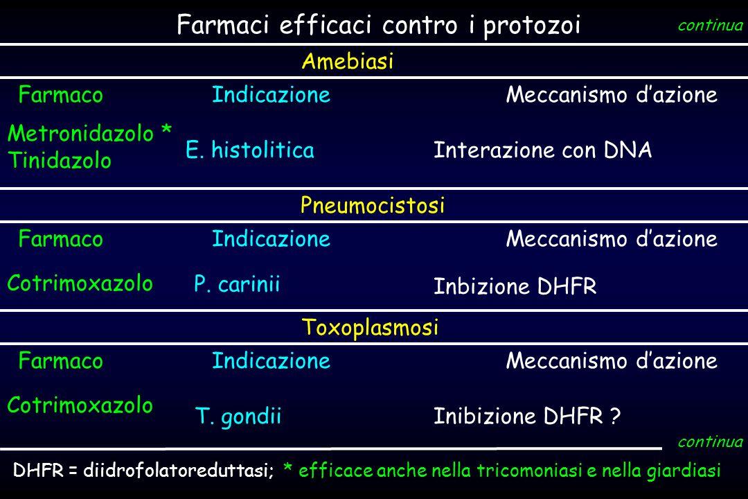 Farmaci efficaci contro i protozoi