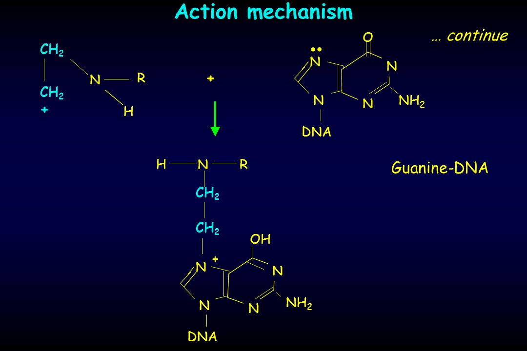 .. Action mechanism … continue + + Guanine-DNA NH2 O DNA N H CH2 N R H