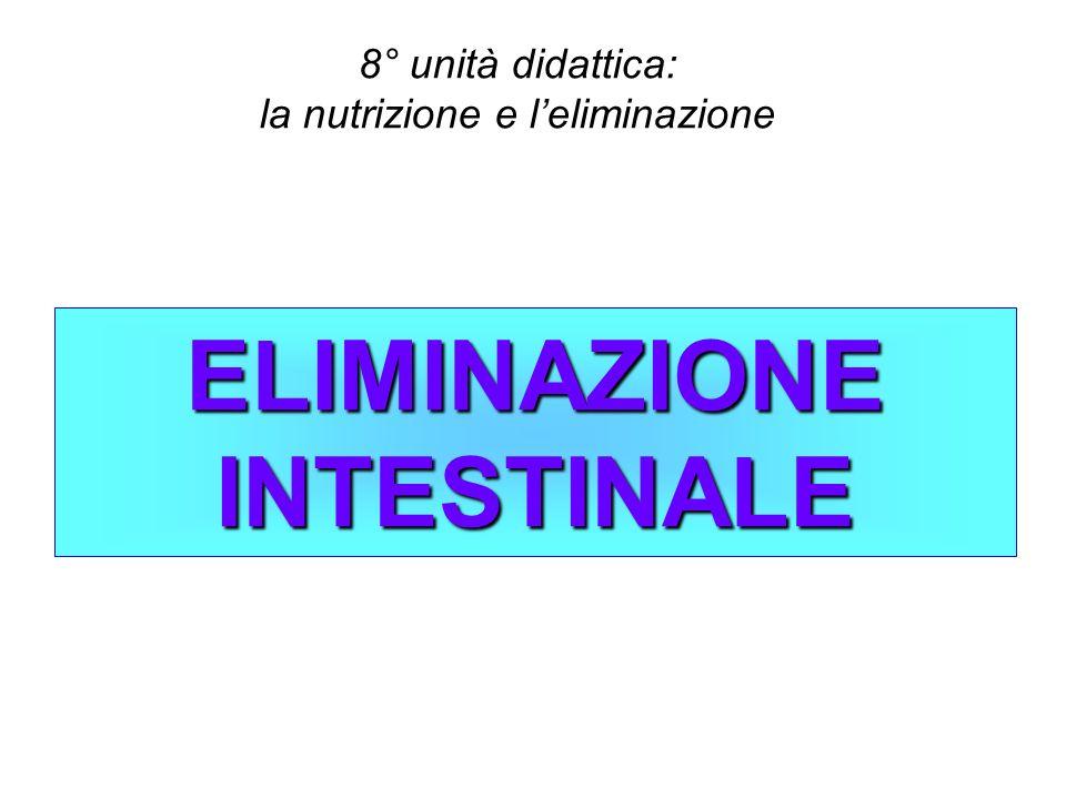 ELIMINAZIONE INTESTINALE