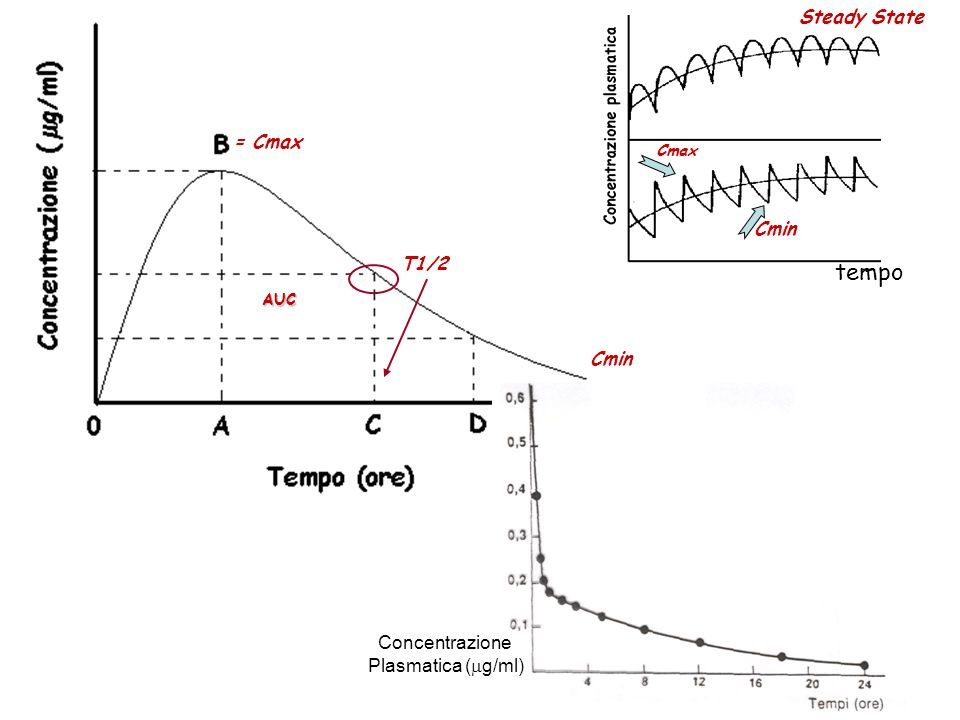 tempo Steady State = Cmax Cmin T1/2 Cmin Concentrazione