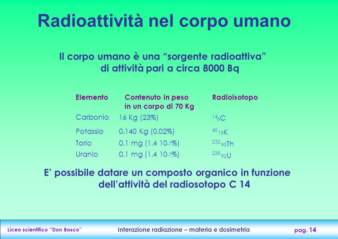 Radioattività nel corpo umano