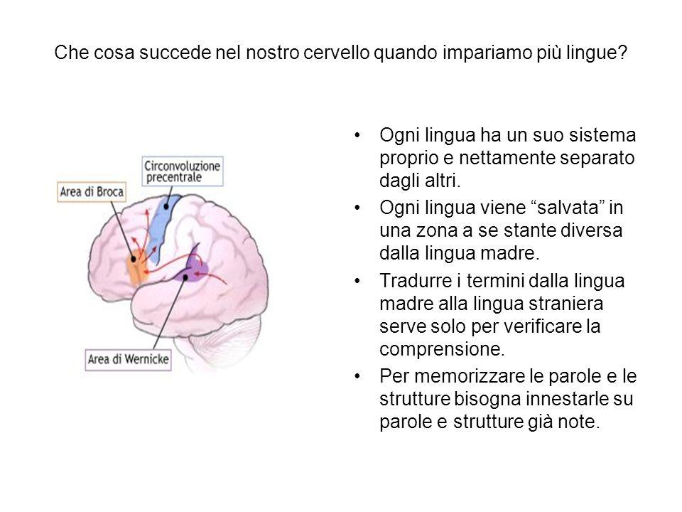 Che cosa succede nel nostro cervello quando impariamo più lingue