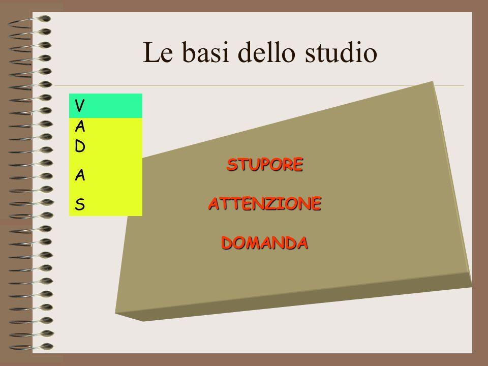 Le basi dello studio V STUPORE ATTENZIONE DOMANDA A D A S