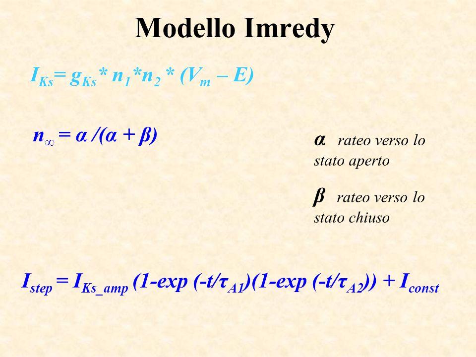 Modello Imredy IKs= gKs* n1*n2 * (Vm – E) n∞ = α /(α + β)