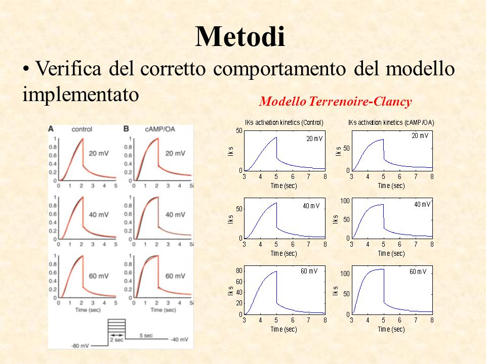 Metodi Verifica del corretto comportamento del modello implementato