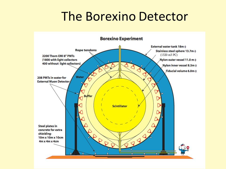 The Borexino Detector