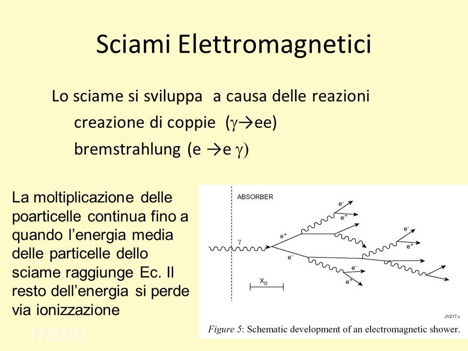 Sciami Elettromagnetici