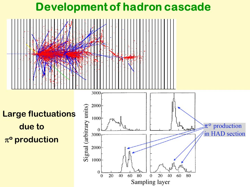 Development of hadron cascade