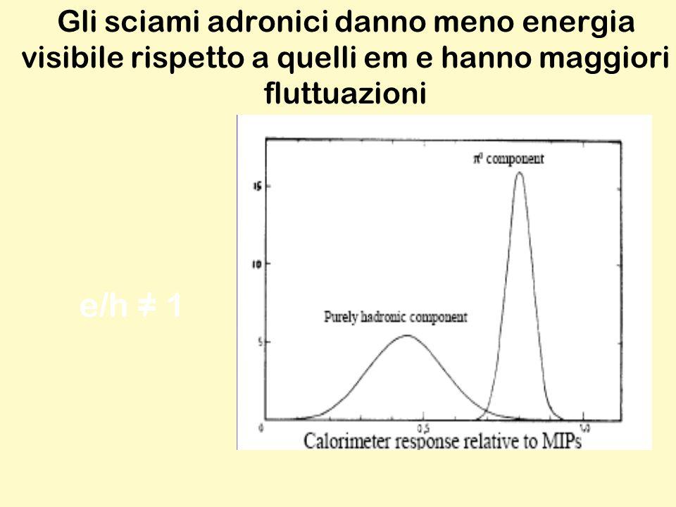 Gli sciami adronici danno meno energia visibile rispetto a quelli em e hanno maggiori fluttuazioni