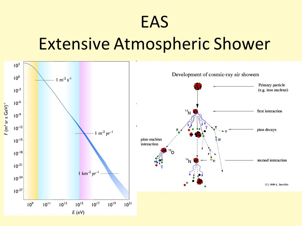 EAS Extensive Atmospheric Shower