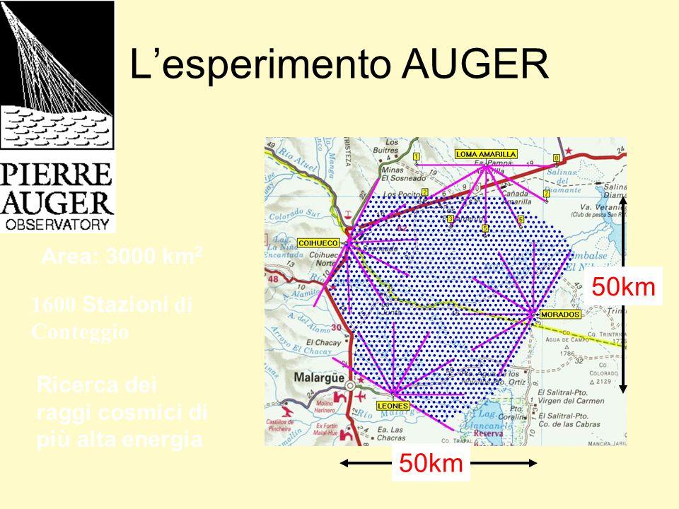 L'esperimento AUGER 50km 50km Area: 3000 km2