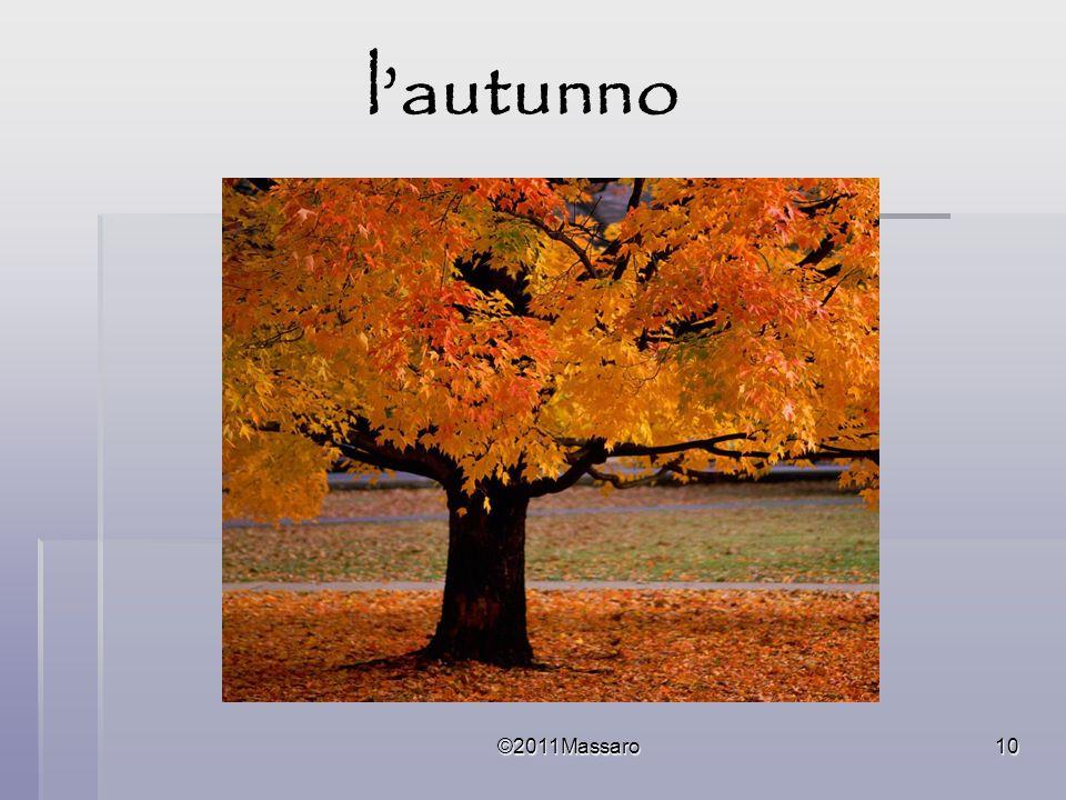 l'autunno ©2011Massaro