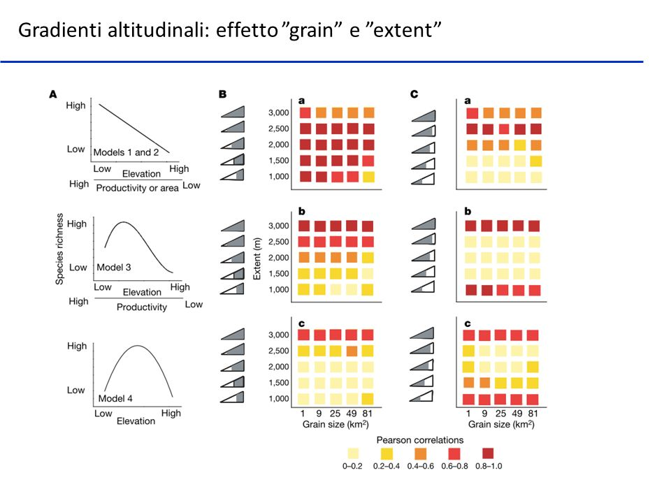 Gradienti altitudinali: effetto grain e extent