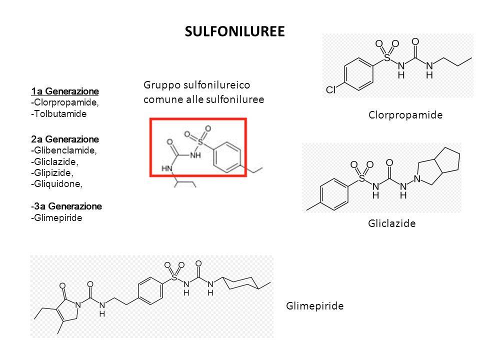 SULFONILUREE Gruppo sulfonilureico comune alle sulfoniluree