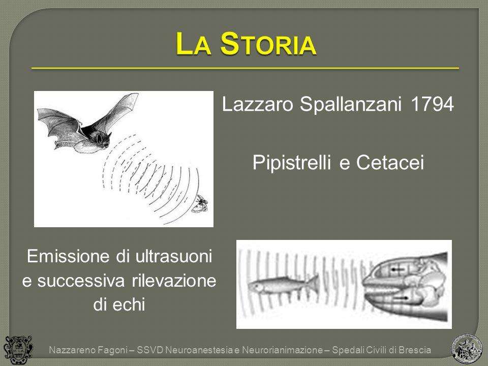 La Storia Lazzaro Spallanzani 1794 Pipistrelli e Cetacei