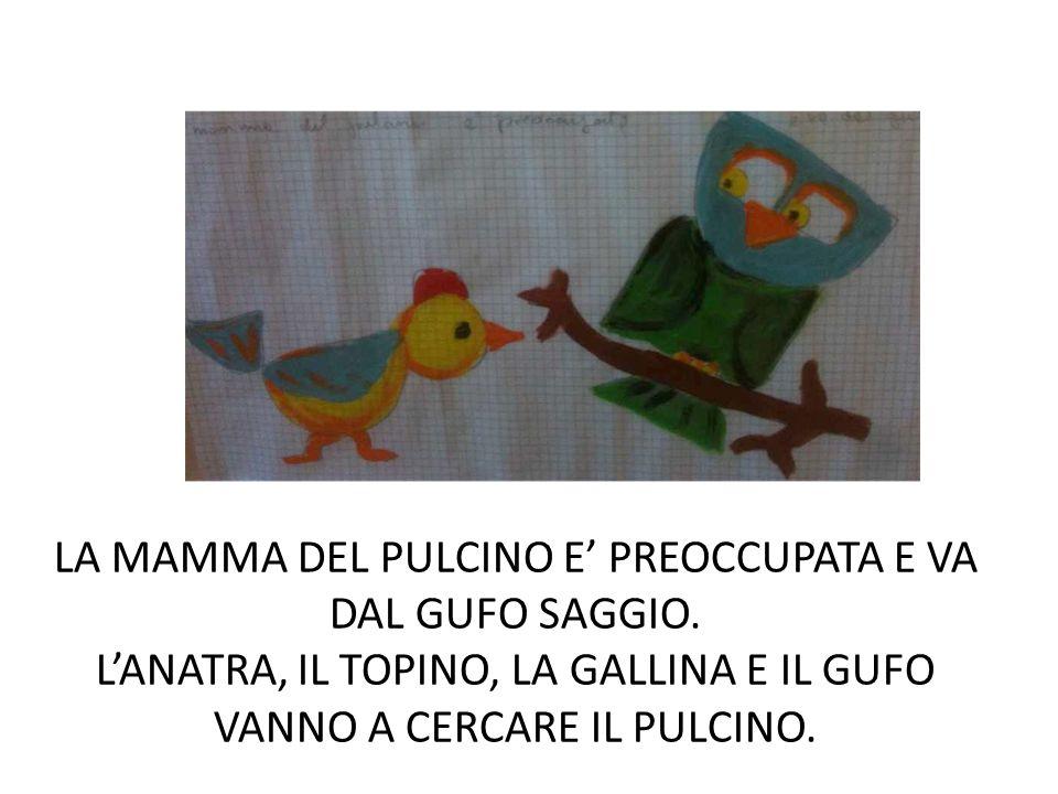 LA MAMMA DEL PULCINO E' PREOCCUPATA E VA DAL GUFO SAGGIO
