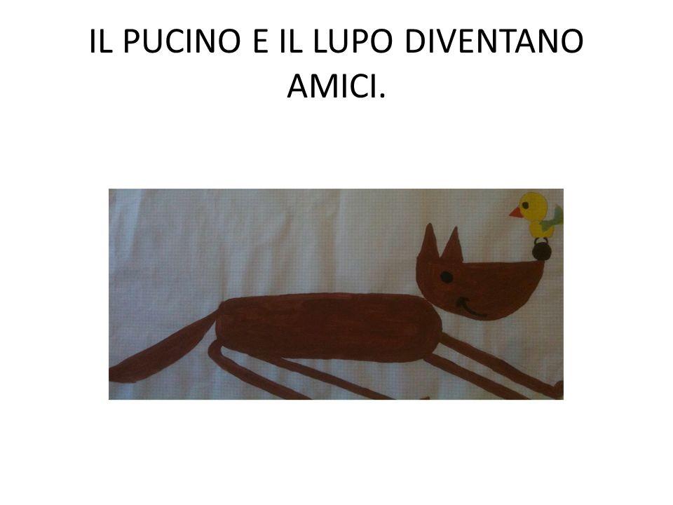 IL PUCINO E IL LUPO DIVENTANO AMICI.