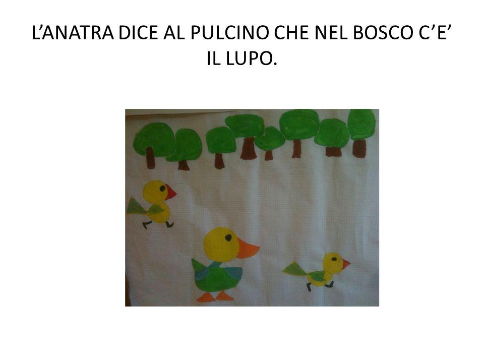 L'ANATRA DICE AL PULCINO CHE NEL BOSCO C'E' IL LUPO.