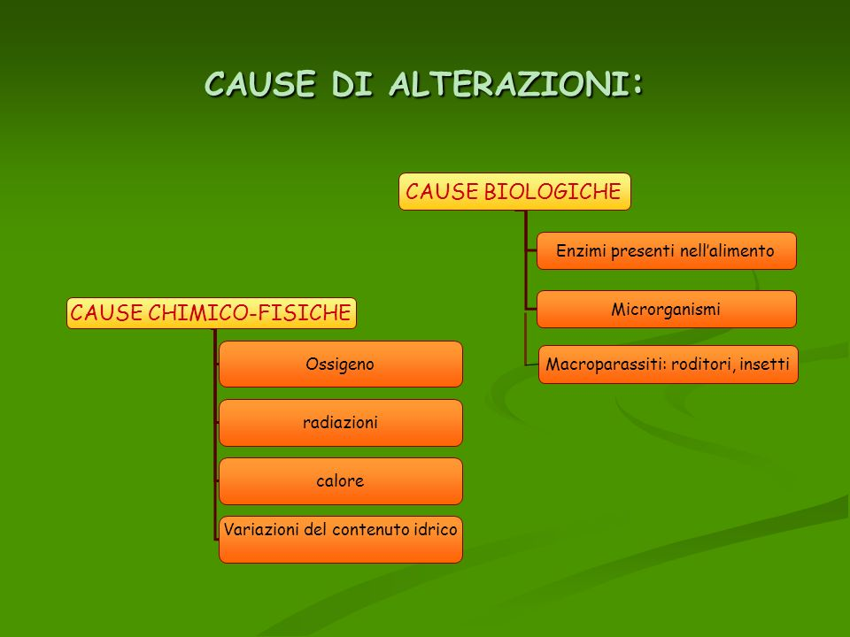 CAUSE DI ALTERAZIONI: CAUSE BIOLOGICHE CAUSE CHIMICO-FISICHE