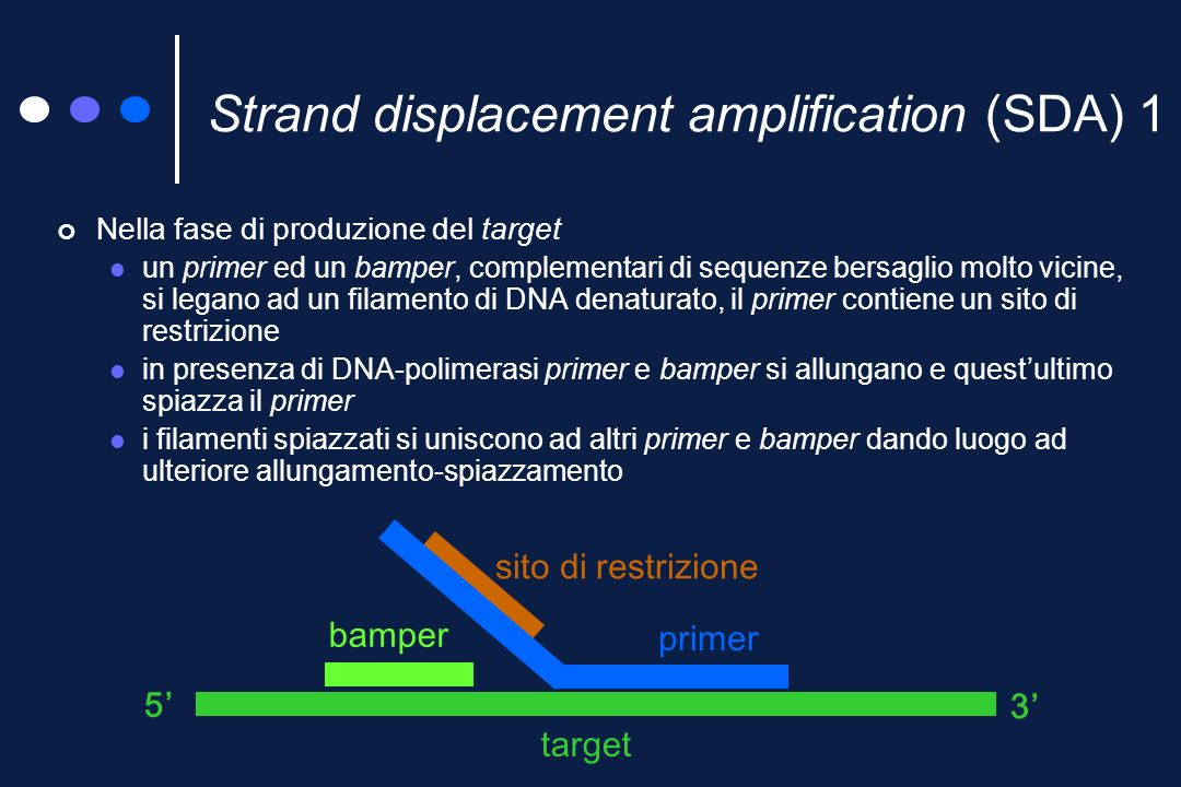 Strand displacement amplification (SDA) 1