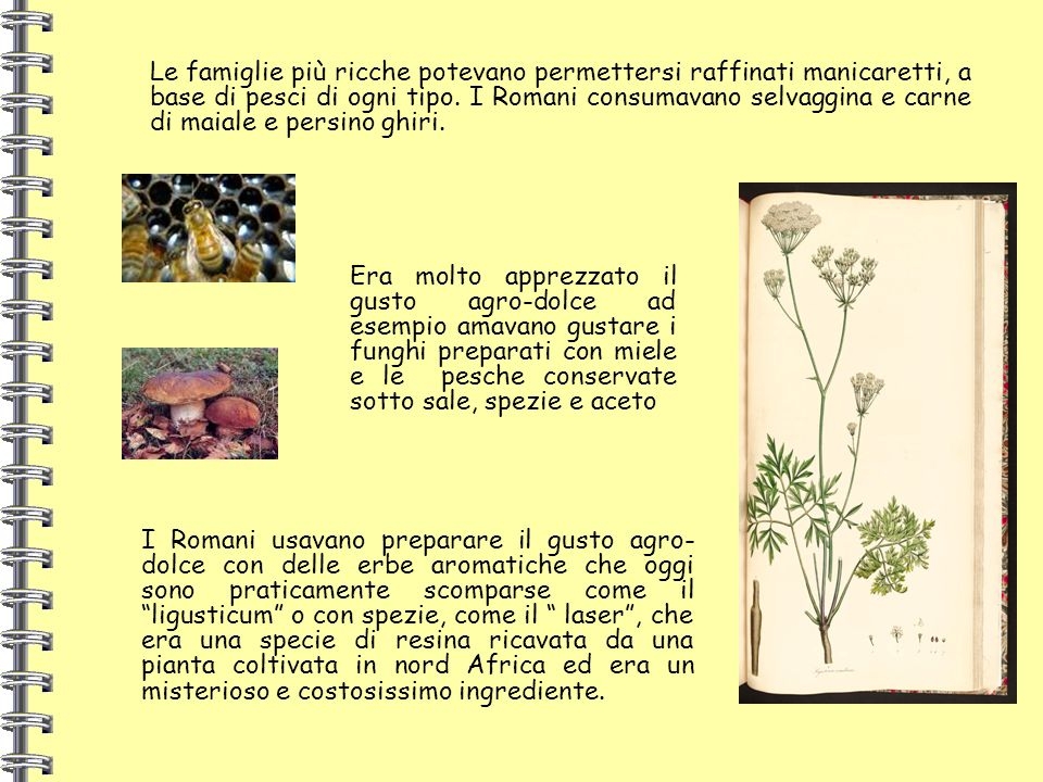Le famiglie più ricche potevano permettersi raffinati manicaretti, a base di pesci di ogni tipo. I Romani consumavano selvaggina e carne di maiale e persino ghiri.