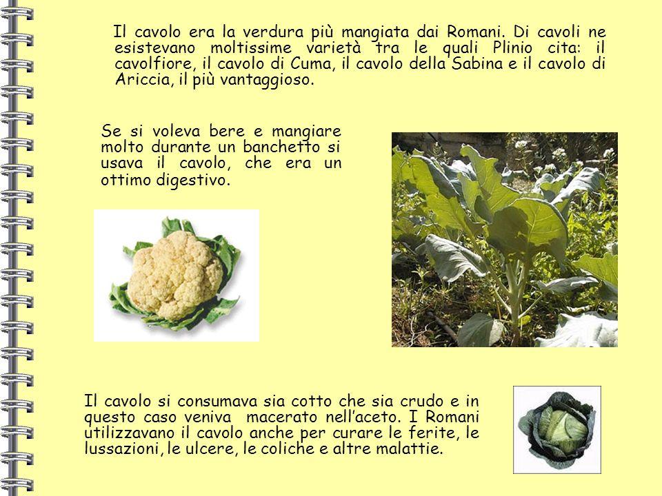 Il cavolo era la verdura più mangiata dai Romani