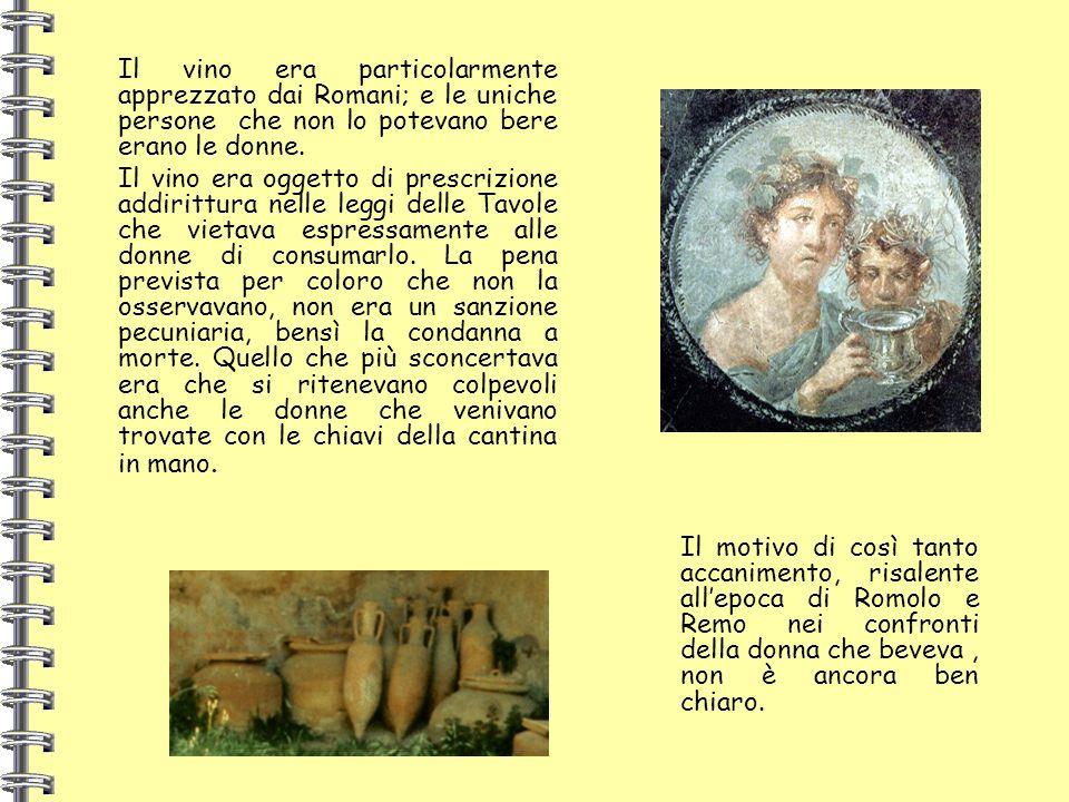 Il vino era particolarmente apprezzato dai Romani; e le uniche persone che non lo potevano bere erano le donne.