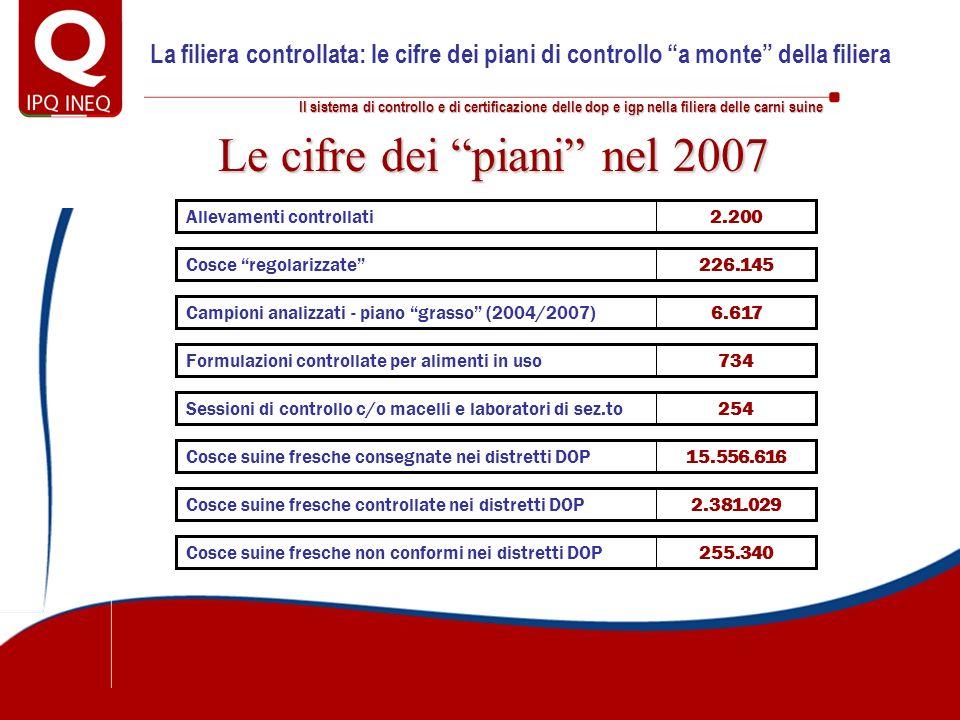 Le cifre dei piani nel 2007