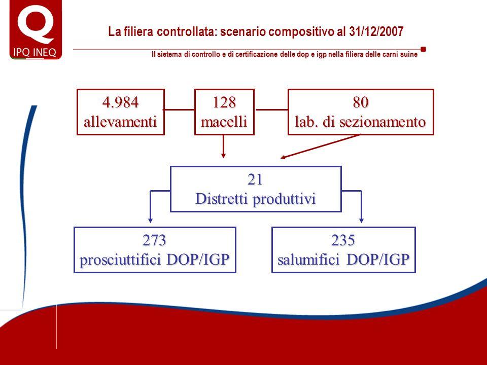 La filiera controllata: scenario compositivo al 31/12/2007