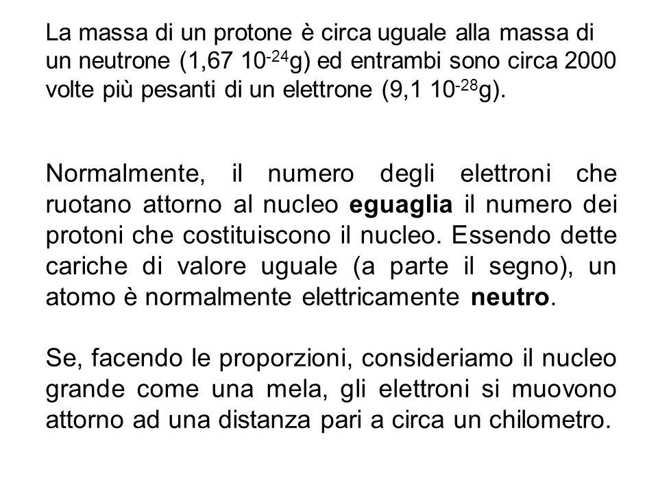 La massa di un protone è circa uguale alla massa di un neutrone (1,67 10-24g) ed entrambi sono circa 2000 volte più pesanti di un elettrone (9,1 10-28g).