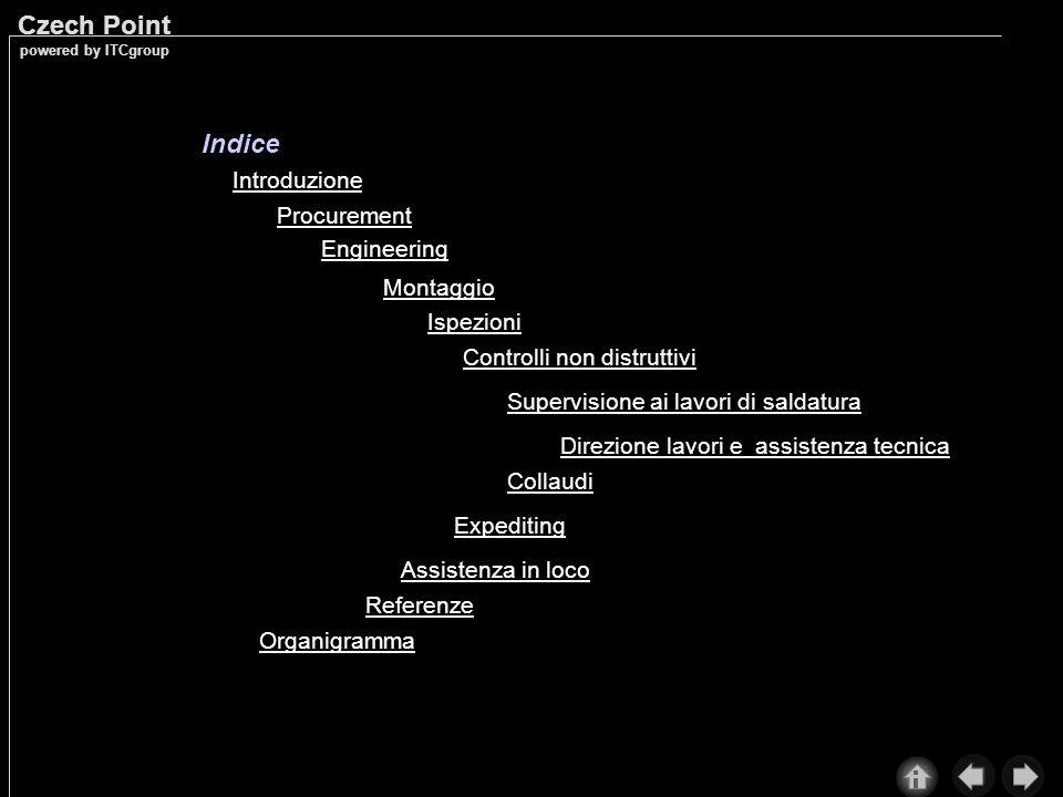 Indice Introduzione Procurement Engineering Montaggio Ispezioni