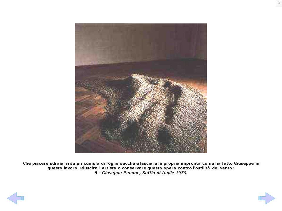 5 - Giuseppe Penone, Soffio di foglie 1979.