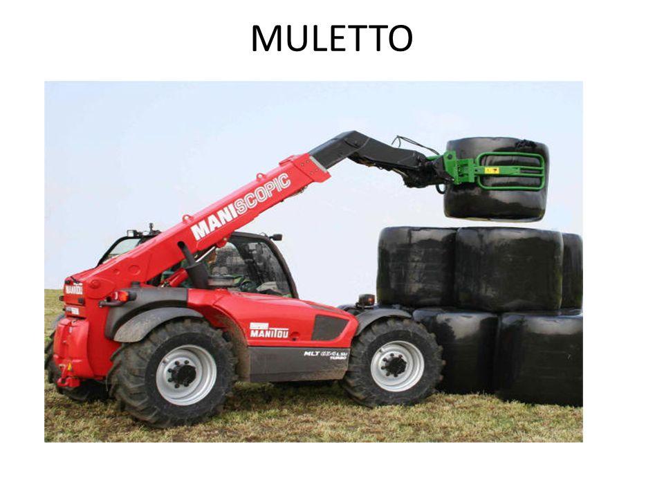 MULETTO