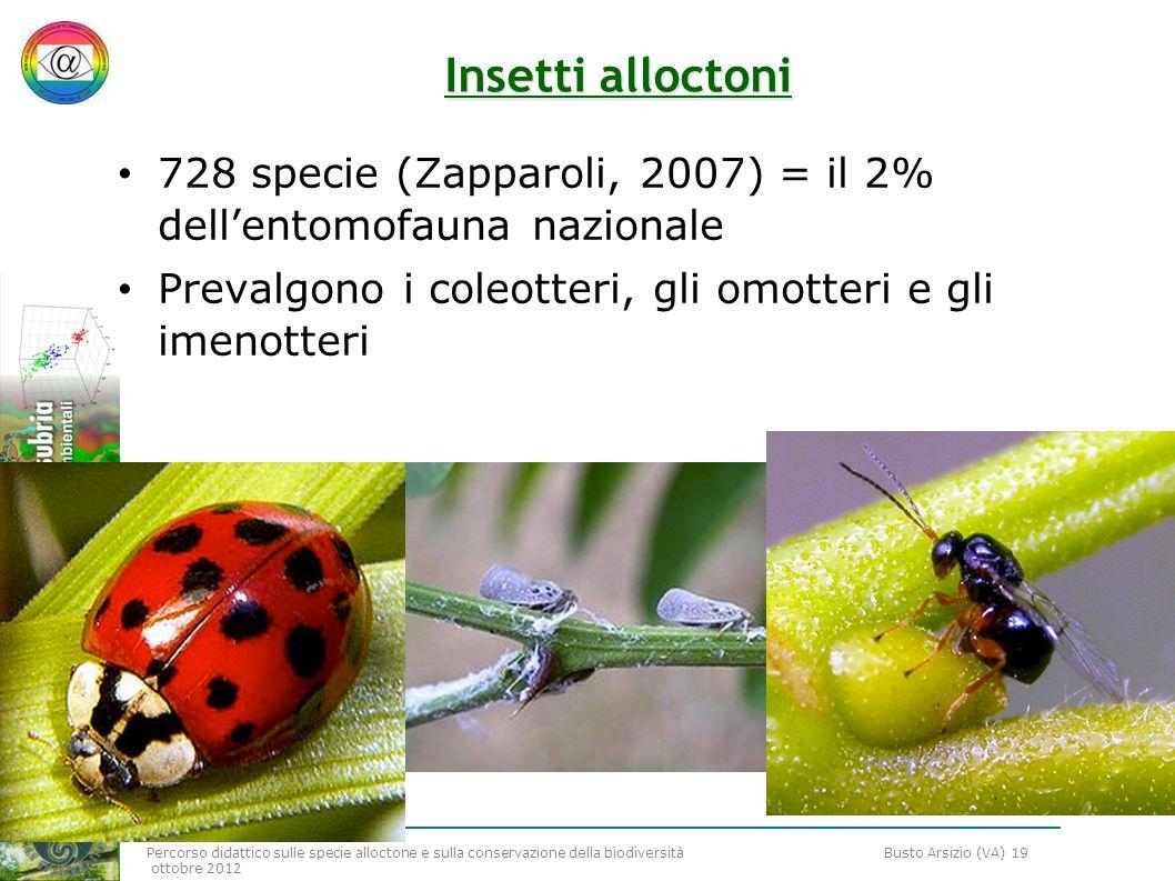 Insetti alloctoni 728 specie (Zapparoli, 2007) = il 2% dell'entomofauna nazionale.