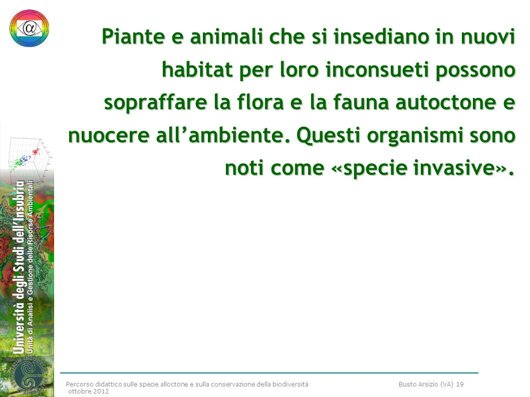 Piante e animali che si insediano in nuovi habitat per loro inconsueti possono sopraffare la flora e la fauna autoctone e nuocere all'ambiente.