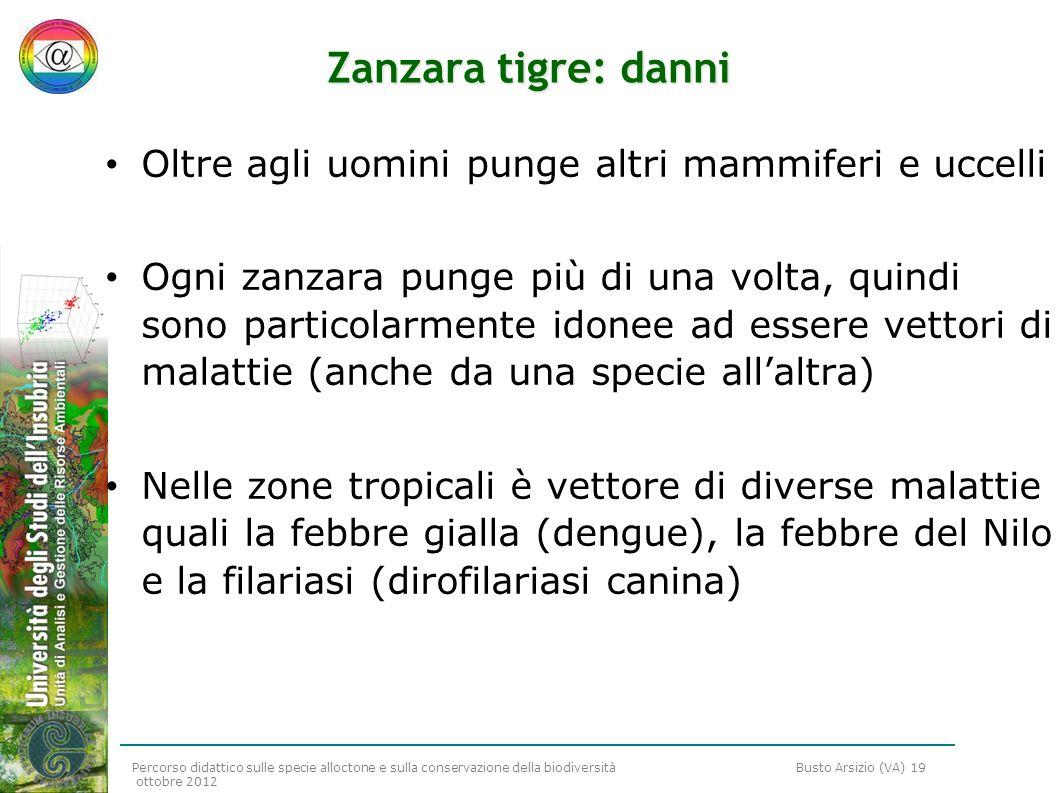 Zanzara tigre: danni Oltre agli uomini punge altri mammiferi e uccelli