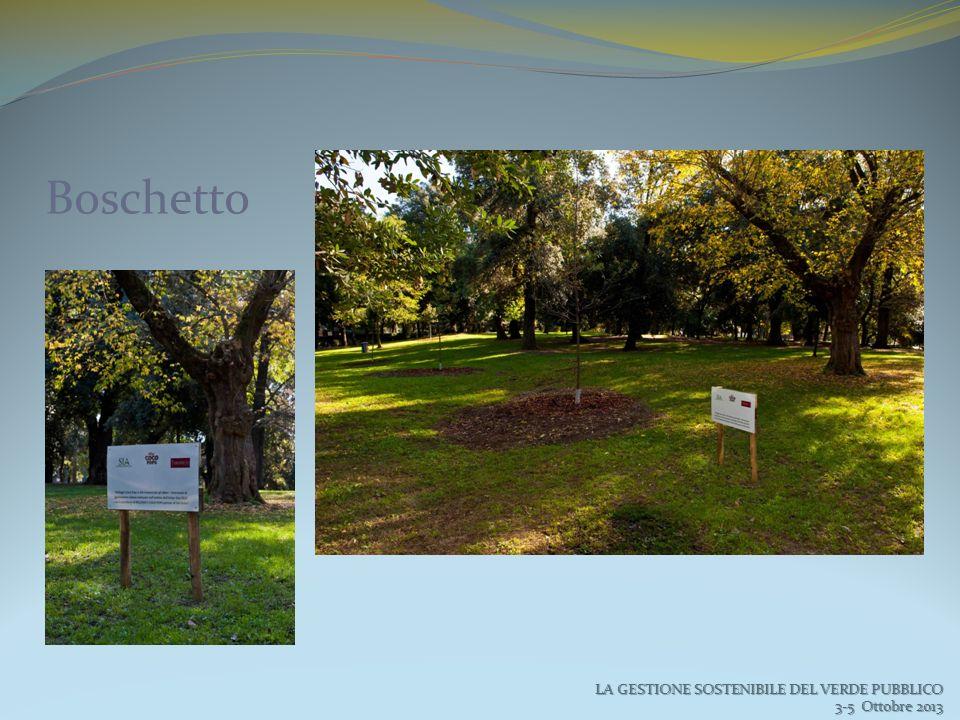 Boschetto LA GESTIONE SOSTENIBILE DEL VERDE PUBBLICO 3-5 Ottobre 2013