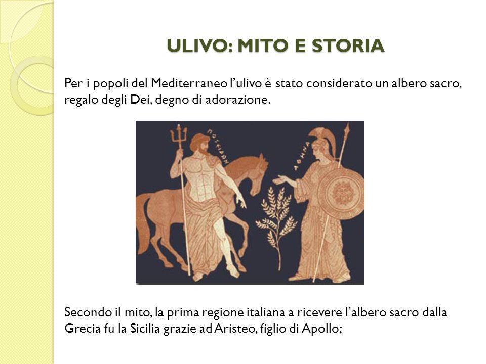 ULIVO: MITO E STORIA Per i popoli del Mediterraneo l'ulivo è stato considerato un albero sacro, regalo degli Dei, degno di adorazione.