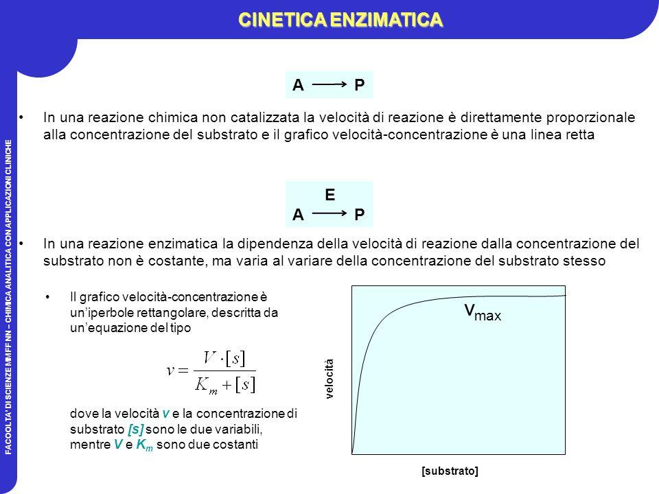 vmax CINETICA ENZIMATICA A P E A P