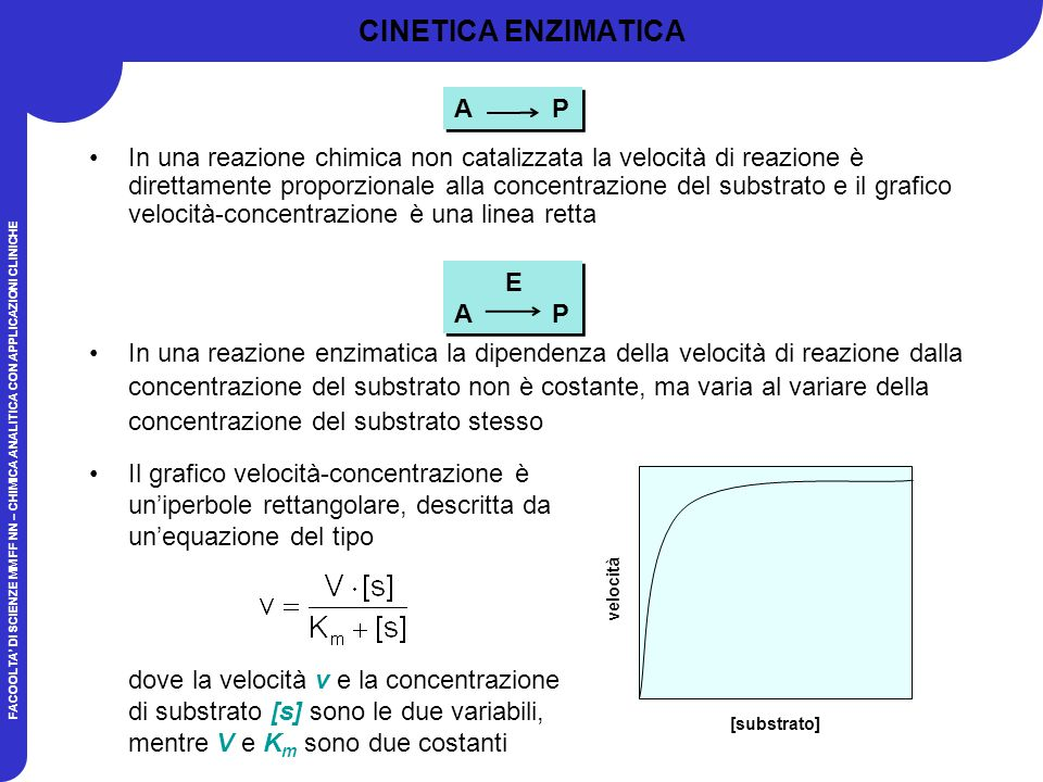 CINETICA ENZIMATICA A P