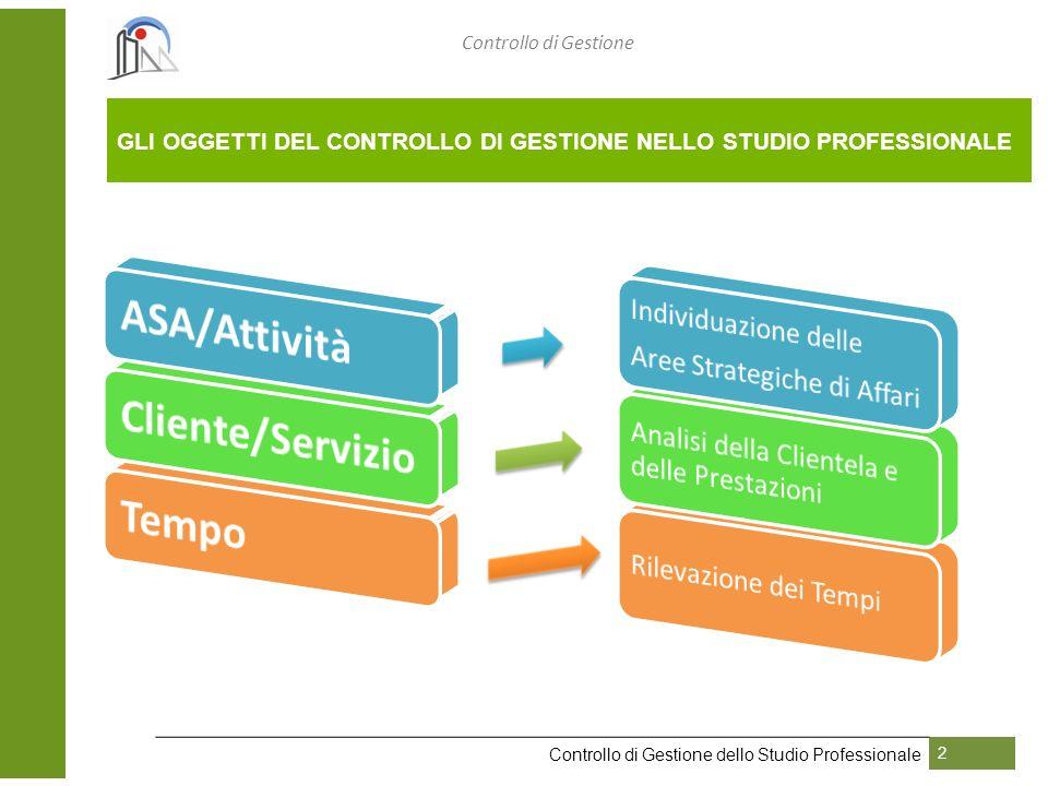 GLI OGGETTI DEL CONTROLLO DI GESTIONE NELLO STUDIO PROFESSIONALE