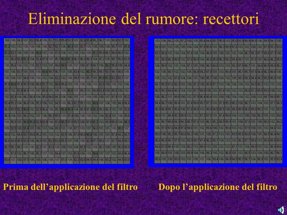 Eliminazione del rumore: recettori