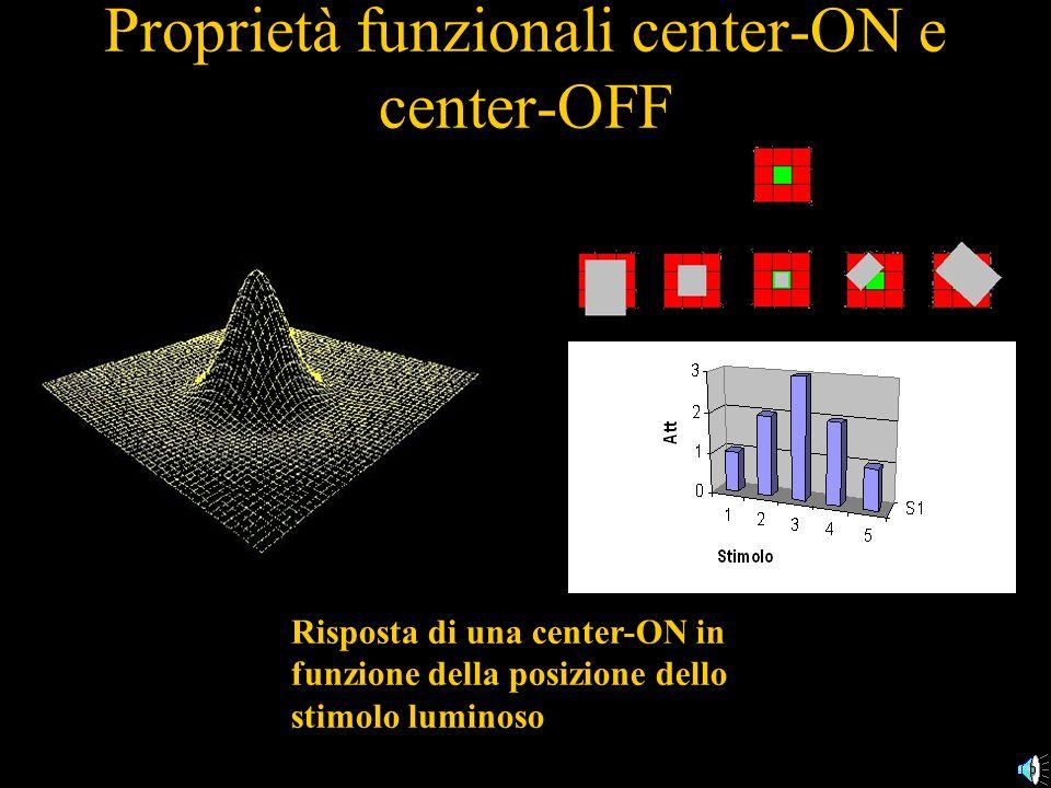 Proprietà funzionali center-ON e center-OFF