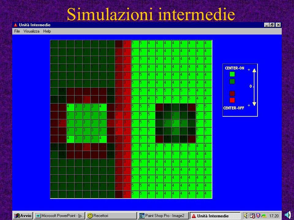Simulazioni intermedie