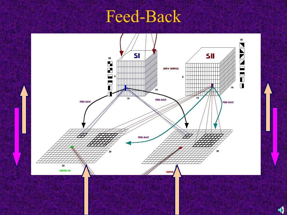 Feed-Back